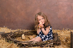 Little girl playing with alive chickens in nest Royalty Free Stock Images