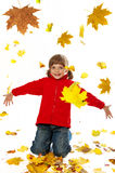 Little girl playing with autumn leaves Royalty Free Stock Photo