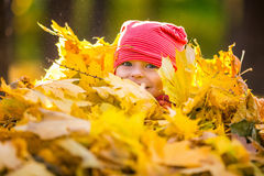 Little girl playing with autumn leaves Stock Image
