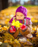 Little girl playing with autumn leaves. In the park Stock Photography