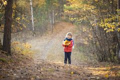 Little girl with yellow leaf. royalty free stock photography