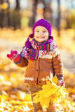 Little girl playing in autumn park Stock Images