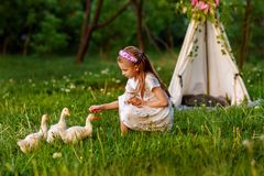 Little girl playing with baby ducks. Beautiful, animal. Little girl playing with ducklings on grass royalty free stock photos