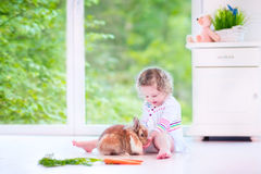 Little girl playing with a bunny Royalty Free Stock Photos