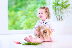 Little girl playing with a bunny Stock Photo