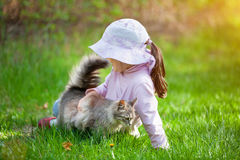 Little girl playing with cat Royalty Free Stock Image