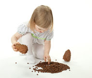 Little girl playing with cedar cones Stock Photography