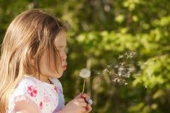 Girl and dandelion Stock Photography