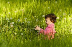 Little girl playing in a dandelion field Royalty Free Stock Photo