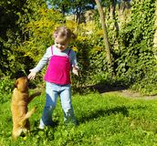 Little girl playing with dog Stock Image