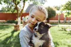 Little girl is playing with a dog. a dog as a gift to children. children`s smile on the nature Stock Photos