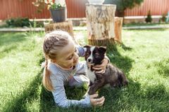 Little girl is playing with a dog. a dog as a gift to children. children`s smile on the nature Royalty Free Stock Photos