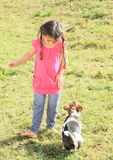 Little girl playing with a dog Royalty Free Stock Photo