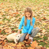 Little girl playing with a dog Stock Images