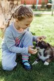 Little girl is playing with a dog. a dog as a gift to children. children`s smile on the nature Stock Images