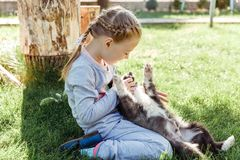 Little girl is playing with a dog. a dog as a gift to children. children`s smile on the nature Royalty Free Stock Images