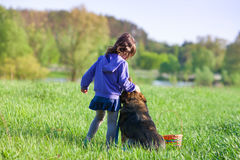 Little girl playing with dog Stock Images