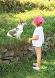 Little girl playing with a dog Royalty Free Stock Photography