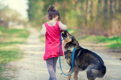 Little girl playing with dog Stock Photos