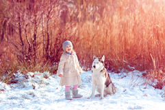 Little girl playing with a dog. Girl with a dog in winter stock images