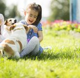 Little girl playing with dogs Stock Image