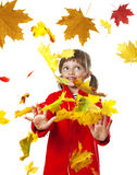 Little girl playing with fall leaves Royalty Free Stock Photos