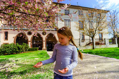 Little girl playing with falling petals of cherry in the park Royalty Free Stock Photo