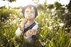 Little girl. A little girl playing in a field of dandelions royalty free stock photography