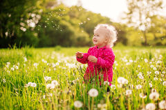 Little girl playing in a field of dandelions Stock Photography