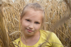 Little girl playing in a field. Gentle sunny day. Royalty Free Stock Photography