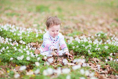 Little girl playing with the first spring flowers Stock Image