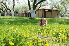 Little girl playing at the green lawn stock photography