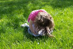 Little girl playing at the green lawn stock images