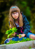 Little girl playing the green maple leaf. In the hands of a bunch of green maple leaf. Royalty Free Stock Photography