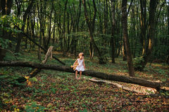 Little girl playing with her bear in the woods. girl sitting on Royalty Free Stock Photography