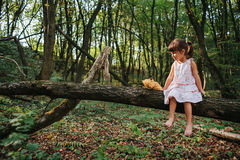 Little girl playing with her bear in the woods. girl sitting on Stock Photo