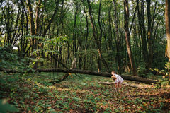 Little girl playing with her bear in the woods. girl sitting on Royalty Free Stock Photos