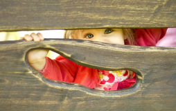 Little girl playing hide and seek. A little girl playing hide-and-seek behind a wooden plate Royalty Free Stock Photo