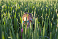 Little girl playing hide-and-seek  through green cereal field Royalty Free Stock Images