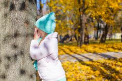 Little girl playing hide and seek near tree in. Little girl playing hide and seek near the tree in autumn park Royalty Free Stock Photo