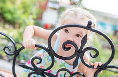 Little girl playing hide and seek. In summer Royalty Free Stock Photos