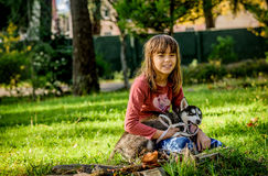 Little girl playing with husky puppy in the park Stock Photo