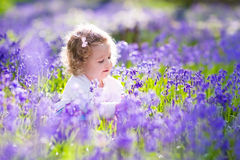 Free Little Girl Playing In Bluebell Flowers Field Stock Photo - 67228430