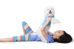 Little girl playing with a maltese dog. Image of a little girl playing with a maltese dog while lying in the studio Royalty Free Stock Image