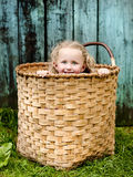 Little girl in the basket. Little girl is playing outside and hiding in the wooden basket Stock Images