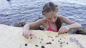Girl playing with Paguroidea on a beach stock footage