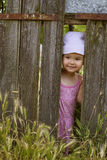 Little girl playing peek a boo through a gap in a broken plank. In a rustic wooden fence royalty free stock photo