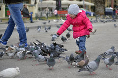 Little girl playing with pigeons Royalty Free Stock Photo