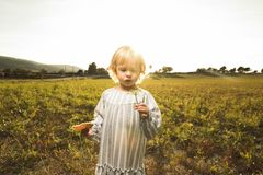 Little girl playing with plants in the field royalty free stock photography
