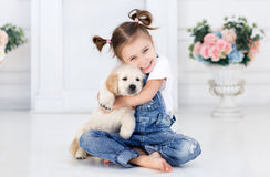 Little girl playing with Puppies Retriever Stock Image